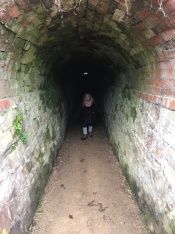 The spooky gradeners tunnels