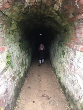 The spooky gradeners tunnels